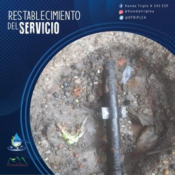 RESTABLECIMIENTO DEL SERVICIO